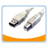 USB2-AB  USB 2.0 CABLE - Type A Male to Type B Male
